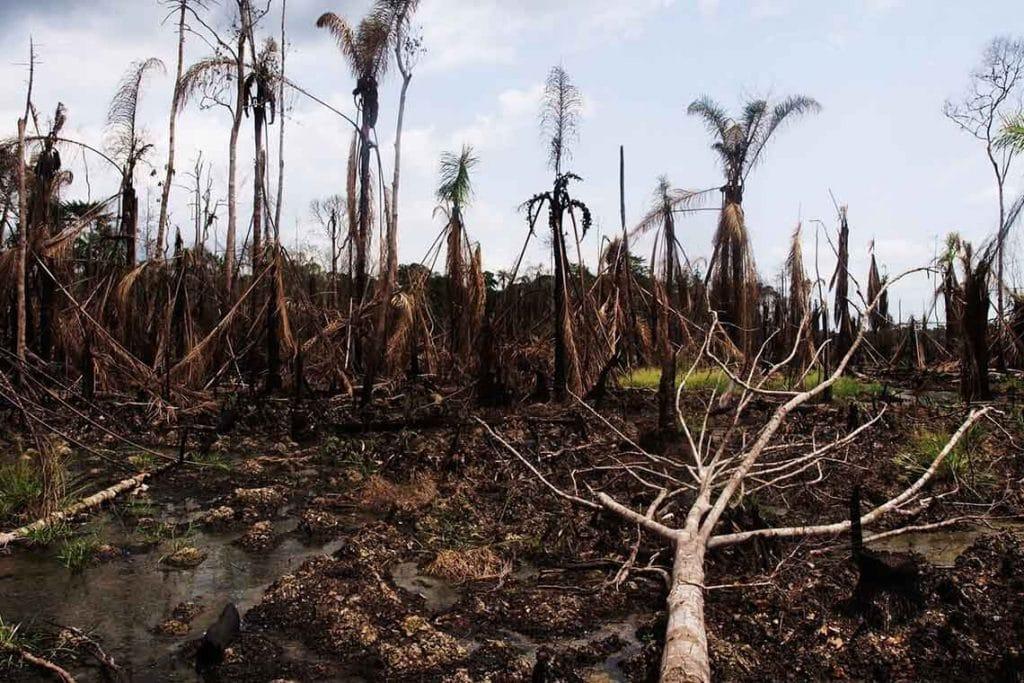 Umweltverseuchung im Nigerdelta